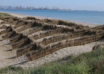 """Dune restoration in the beach of """"La Creu"""", Valencia (Valencia)"""